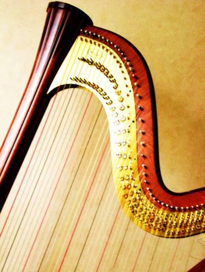 Actualité des cours de harpe et cours collectifs : situation liée au covid 19