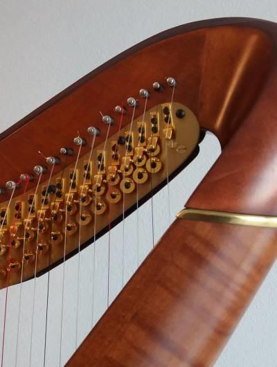 Cours de harpe et de solfège par webcam