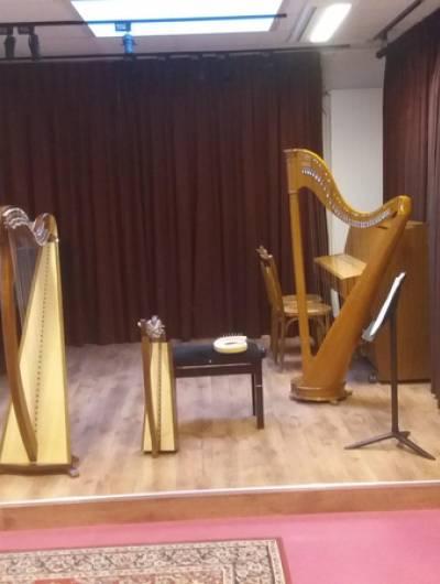 Inscriptions cours de harpe en présentiel